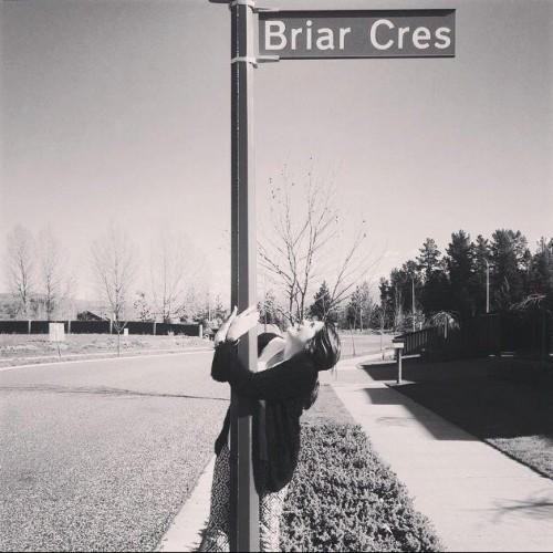 Briar Colville